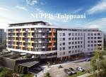 106_nuppu-Tulppaani1